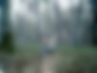 Natuurfragmentje: reebok