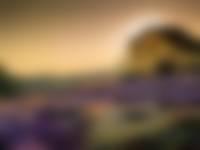 Brunssummerheide volgens Chris Herben