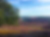 Zijpenberg uitzicht