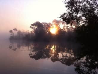Wandelroute Goorven door de Oisterwijkse bossen