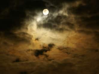 Avondwandeling bij volle maan Mosselse Zand, Veluwe