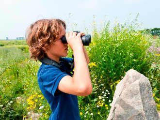 Speurtocht: Kip Tika op natuur-avontuur