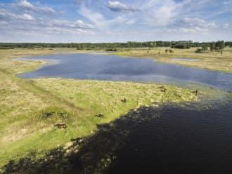 Natuurgrondenruil in Limburg voor nog effectiever beheer