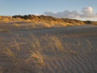 22 en 23 november bijeenkomsten toekomst Noord-Hollandse kust