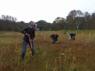 Vrijwilligerswerk in de natuur