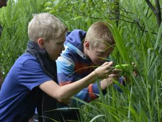 OERRR Natuur fotograferen met smartphone of tablet - Veluwezoom