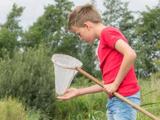 Op jacht naar waterbeestjes