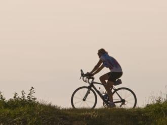 Fietsroute landgoederen in Nationaal Park Zuid-Kennemerland | Zuid