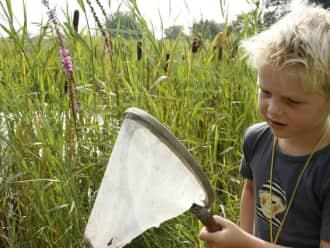 OERRR waterdiertjes zoeken - Korenburgerveen