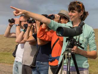 Vogels kijken op Schiermonnikoog