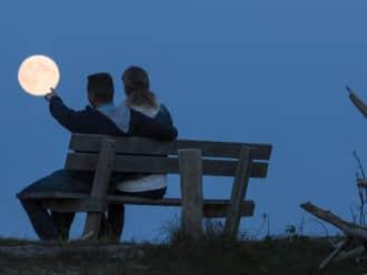 Wandeling bij volle maan in Lusthof de Haeck
