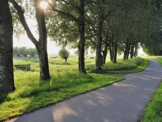 Natuurbegraafplaatsen