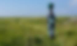 Vrijwilliger maakt beelden met speciale camera in de Griend