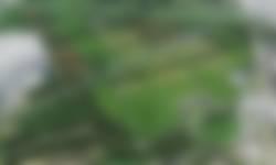 Schiebroekse Polder - overzicht