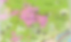 Wandelpaden omgeving Posbank per 1 maart 2019