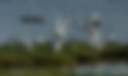 Uitzicht vogelobservatorium