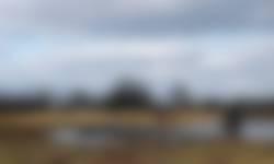 Vlonderpad in Beekbergerwoud