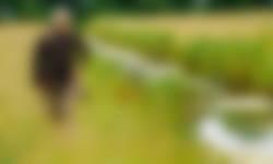 Vrijwilliger Jick op zoek naar planten in de Nieuwkoopse Plassen