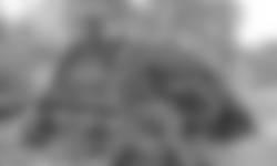 Bewoning plaggenhutten Beekbergerwoud