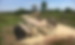 Uitkijktoren Banisveld