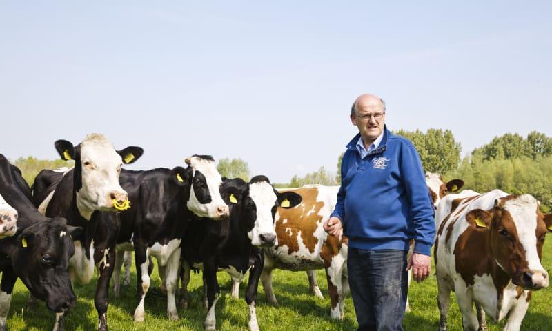 Boer Arie van den Berg in Midden-Delfland