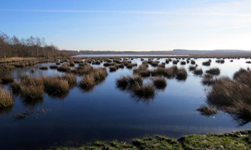 Fochteloerveen - Nederland, het natte land