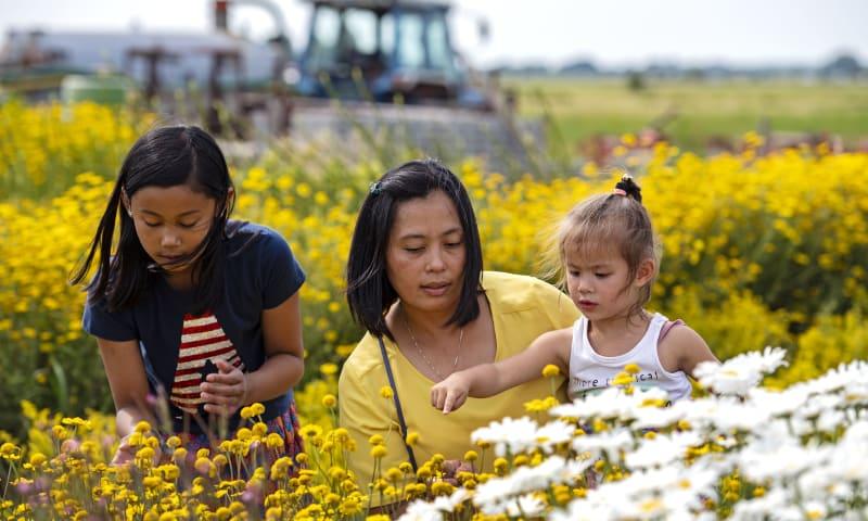 Gezin in bloementuin Belevenisboerderij Schieveen