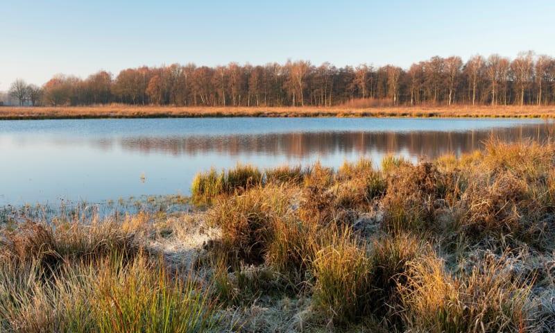 Wijffelterbroek - Nederland, het natte land