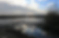 Slikkige oevers in Korendijkse Slikken