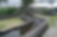 Waterspeeltuin Wormer- en Jisperveld
