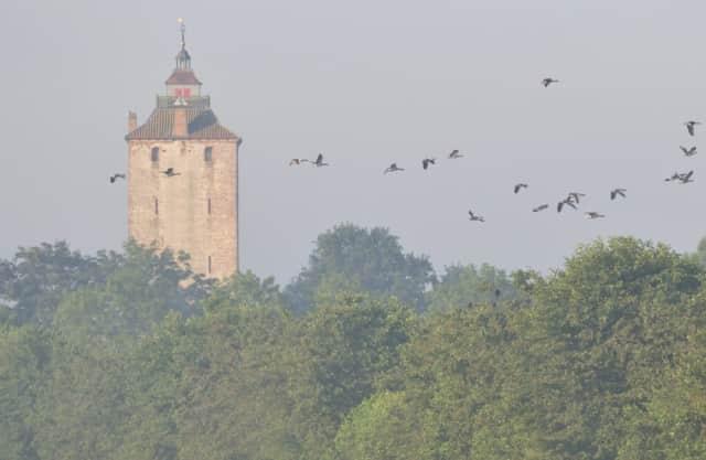 Herken de middeleeuwen