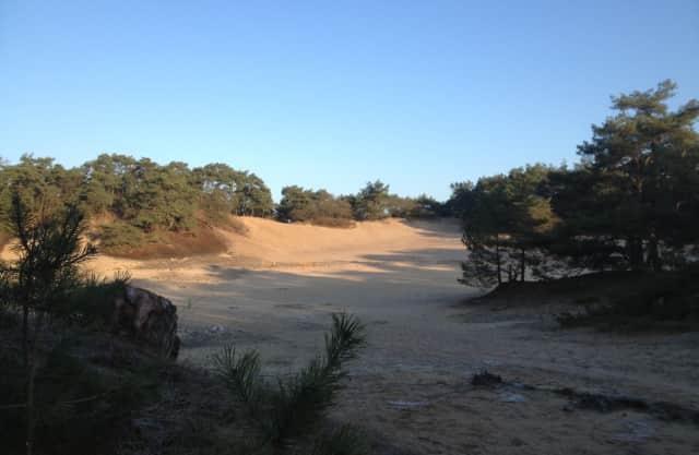 Ravotten in het zand