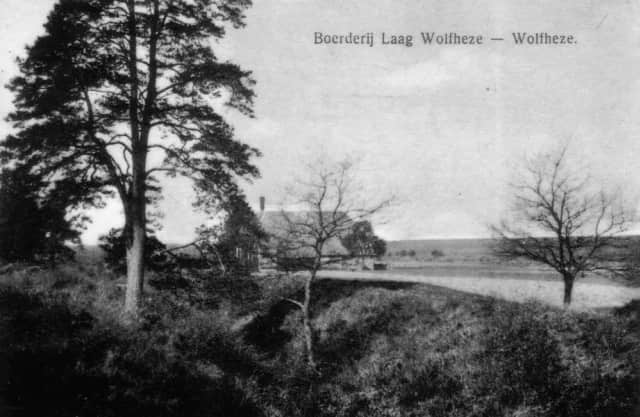 Laag Wolfheze (kousenhuisje)