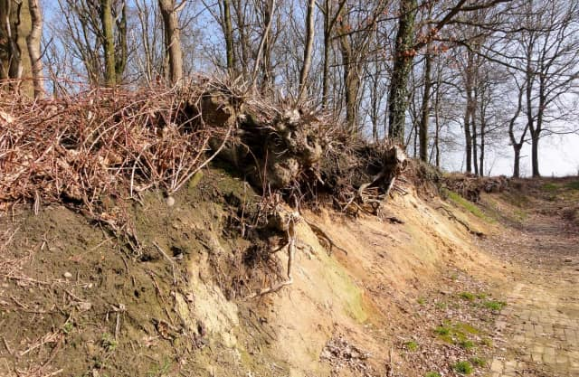 Geologisch Monument Heetveld