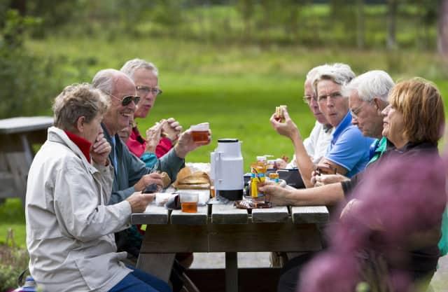 Picknickplek Thijssengracht