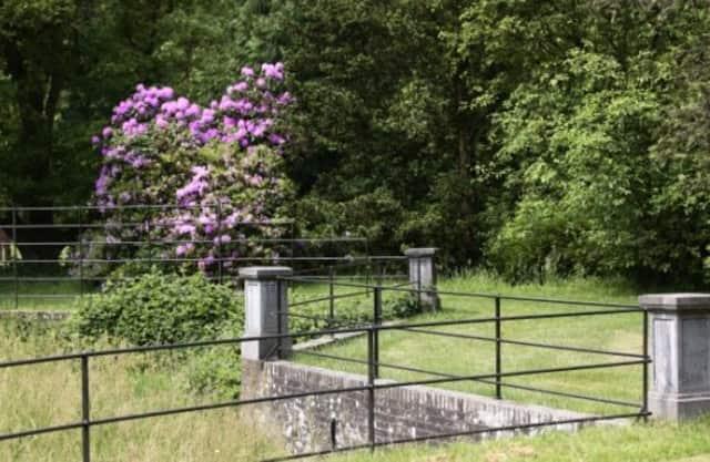 Bos van Blaauw