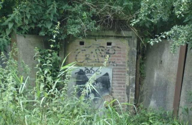 Vleermuizen in een bunker