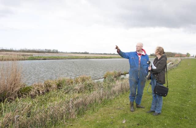 Weidevogelbeheer in Schieveen