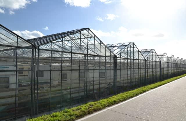 De tuinbouwstreek