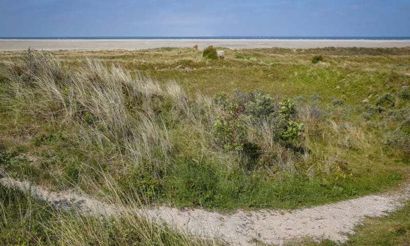 Trailrun Schiermonnikoog (Friesland)