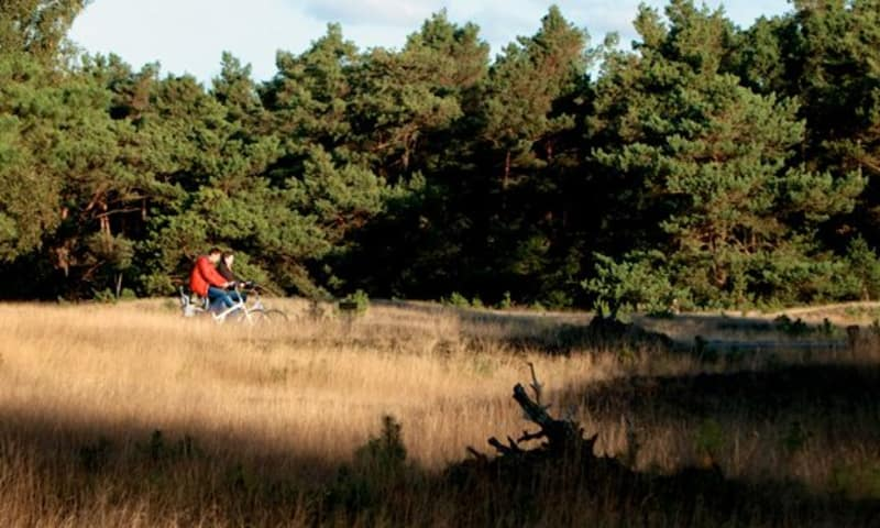 Fietsroute Smaakvol Landschap bij Arnhem