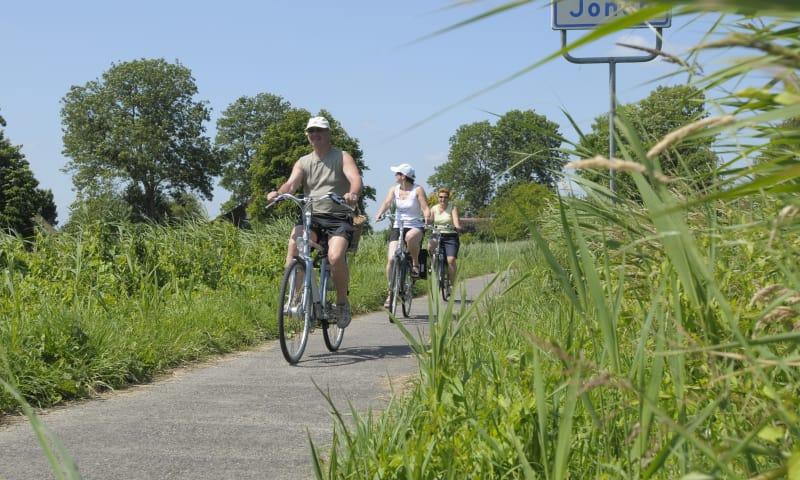 Fietsroute landgoed Nijenburg, Bergermeerpolder en Loterijlanden, vlak bij Alkmaar