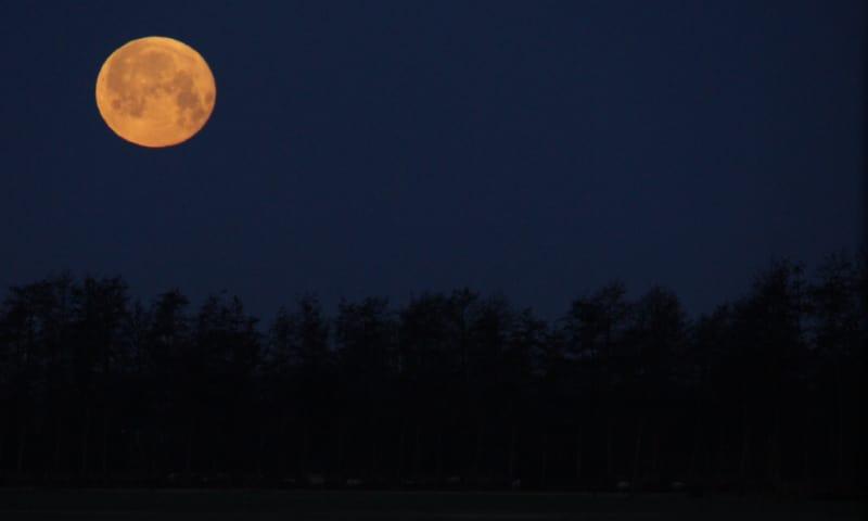 Nacht van de Nacht - Noord