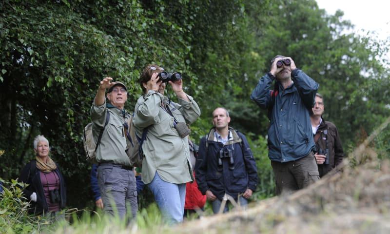 Wandelen en vogels kijken in Ackerdijkse Plassen