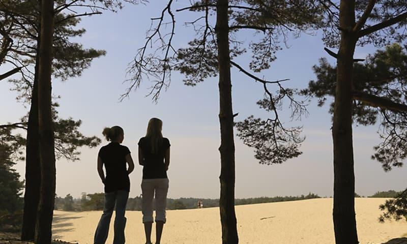 Wandelroute Leuvenhorst over het Hulshorsterzand bij Harderwijk
