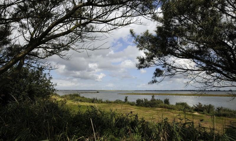 Uitkijkpunt Scheelhoekbos, bij Stellendam