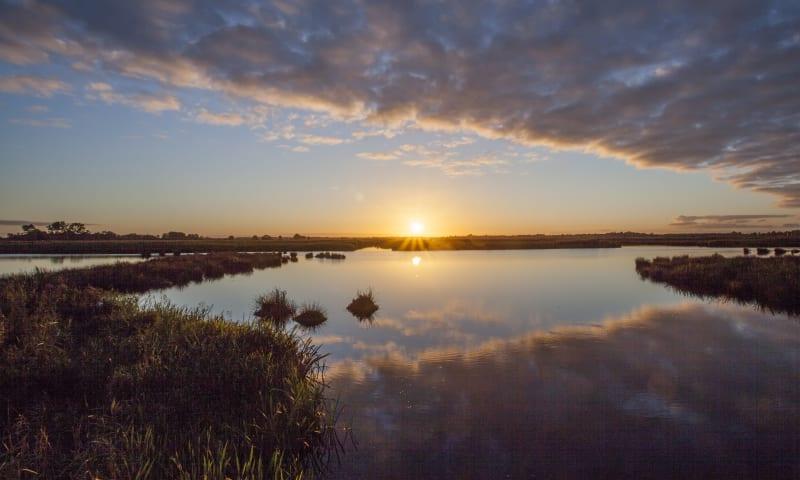 Waterpartij met zon De Onlanden