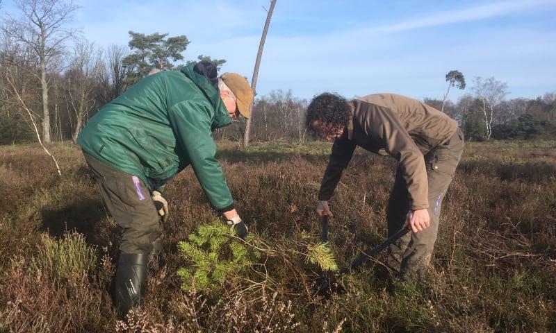 Twente natuurbeheer vrijwilligers
