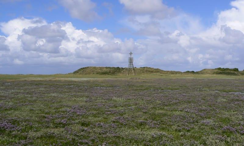 Unieke eilandwandeling naar Willemsduin
