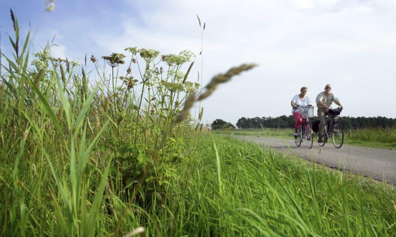 Op de fiets door De Onlanden